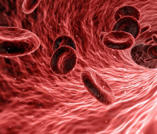 Standardized workflows for precise high-throughput proteomics of blood biofluids